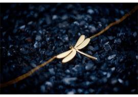 Naszyjnik złoty - ważka